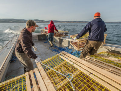 My First Setting Day - Lobster Fishing In Lismore Nova Scotia