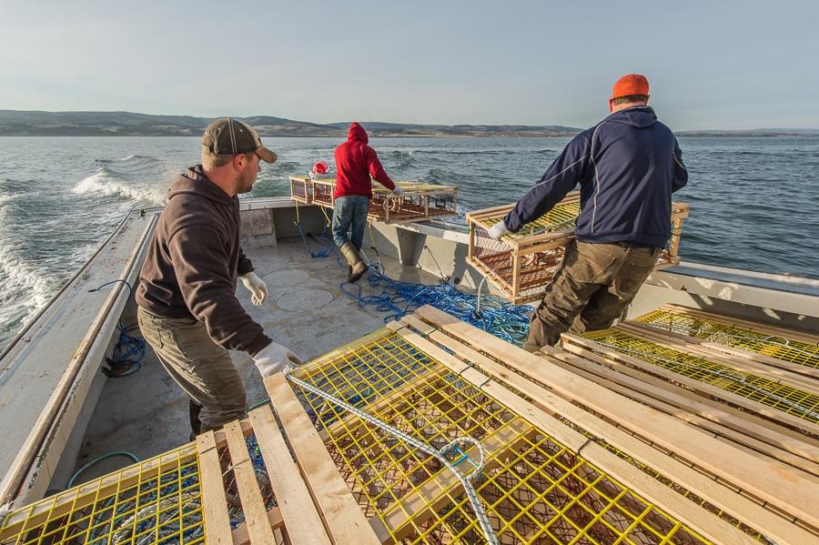 My first setting day lobster fishing in lismore nova for Nova scotia fishing